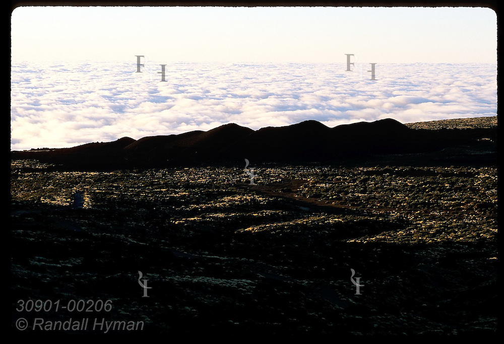 Carpet of coastal clouds hugs alpine fields of black volcanic cinder in early morn; Tenerife. Spain