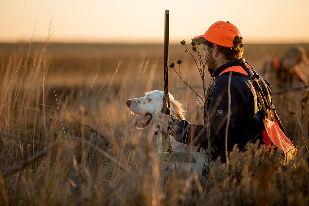 Upland hunter with his English Setter