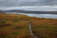 Looking towards lake Riebnes from above the treeline along Kungsleden Trail, Lapland, Sweden