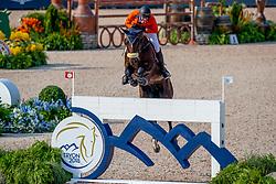Schuttert Frank, NED, Chianti s Champion<br /> World Equestrian Games - Tryon 2018<br /> © Hippo Foto - Stefan Lafrentz<br /> 20/09/2018