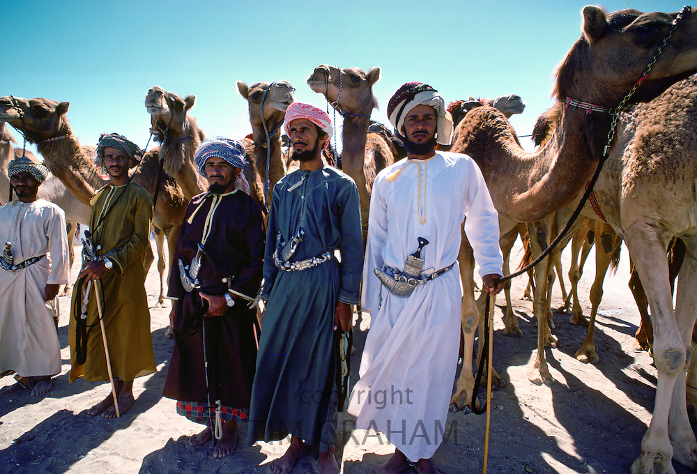 Camel drivers with their camels, Abu Dhabi RESERVED USE - NOT FOR DOWNLOAD -  FOR USE CONTACT TIM GRAHAM