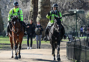 Police are seen patrolling on Horses through St James's Park in London, Monday, March 23, 2020. After having encouraged people to practice social distancing to help prohibit the spread of Coronavirus, the British Government imposed further restrictions on Monday to enforce public adherence to their advice. (Photo/Vudi Xhymshiti)