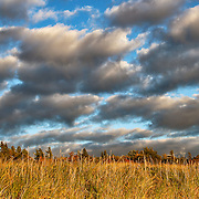 """Autumn's Light""<br />