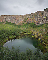 Ásbyrgi canyon, North Iceland.