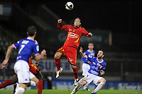FOOTBALL - FRENCH CHAMPIONSHIP 2010/2011 - L2 - LEMANS FC v EVIAN TG - 12/11/2010 - PHOTO JEAN MARIE HERVIO / DPPI - THORSTEIN HELSTAD (LMFC) / GUILLAUME RIPPERT (ETG)