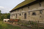 Medieval barn and grazing hoses in rural village of Neron, Eure-et-Loir, France.