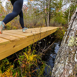 A woman runs on a new boardwalk in a cedar swamp at the Witt Swamp Preserve in Norway, Maine. Fall.