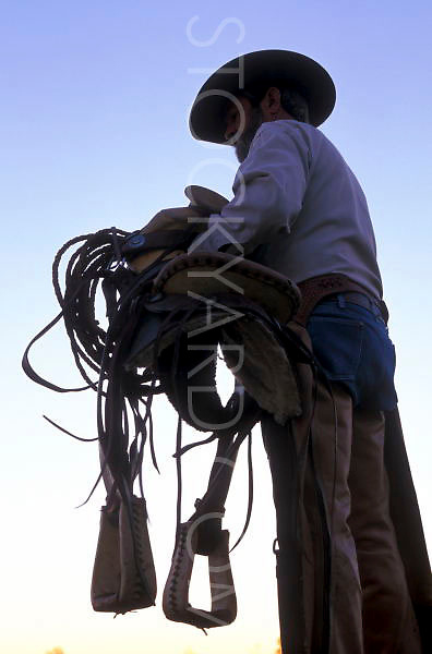 Cowboy gets ready to saddle up