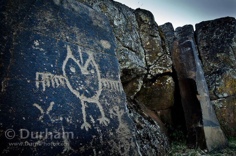 """An owl-like creature along with other figures is etched into relief against a rock on the """"Temani Pesh-wa"""" trail (also """"written on rock"""" trail) in Columbia Hills State Park on the Washington Side of the Columbia River Gorge. This petroglyph was removed from the famous """"Petroglyoh Canyon"""" along the Columbia River before it was flooded by construction of The Dalles Dam in 1957. The Army Corps Of Engineers stored the rock art until 2004 when Temani Pesh-wa trail was built."""