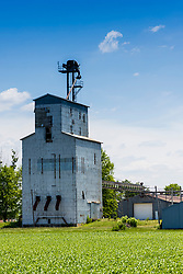 03 June 2021:   Sabina Illinois still sports an aging unique looking grain elevator and weigh house.