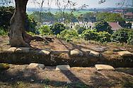 Hill A1 'Eliane 2' overlooking the Cemetery of Vietnamese Martyrs of Dien Bien Phu, Muong Thanh Valley, Dien Bien Province, Vietnam, Southeast Asia