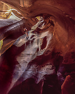 SANDSTONE, FLOWING WATER, LIFE: ZION NATIONAL PARK