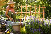 Wendy Summers enjoying a summer day in her backyard garden.