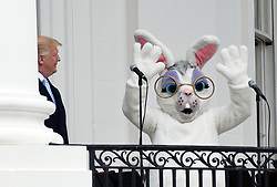 President Donald Trumplooks at the Easter bunny during the 140th Easter Egg Roll on the South Lawn of the White House in Washington, DC on Monday, April 2, 2018. Photo by Olivier Douliery/Abaca Press