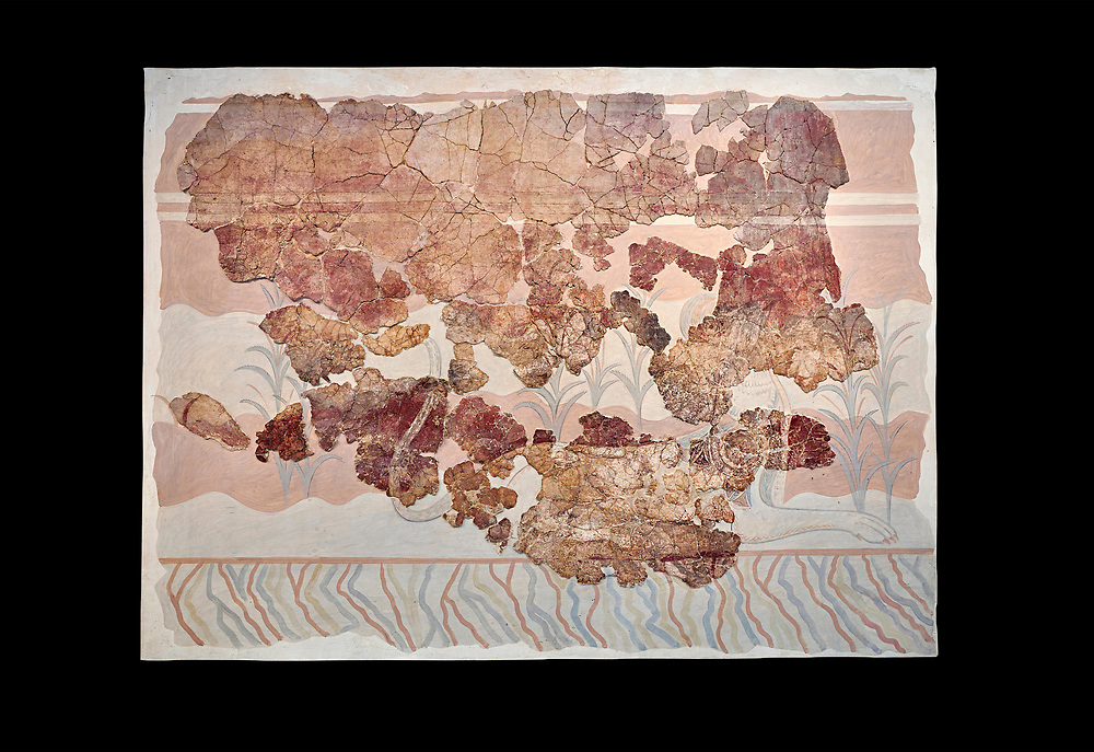 Minoan wall art fresco from the Throne Room of Knossos, 1450-1300 BC. Heraklion Archaeological Museum. Black Background. <br /> <br /> This Minoan fresco depicts griffins and palm trees .<br /> <br /> If you prefer to buy from our ALAMY PHOTO LIBRARY  Collection visit : https://www.alamy.com/portfolio/paul-williams-funkystock/minoan-art-artefacts.html . Type -   Heraklion   - into the LOWER SEARCH WITHIN GALLERY box. Refine search by adding background colour, place, museum etc<br /> <br /> Visit our MINOAN ART PHOTO COLLECTIONS for more photos to download  as wall art prints https://funkystock.photoshelter.com/gallery-collection/Ancient-Minoans-Art-Artefacts-Antiquities-Historic-Places-Pictures-Images-of/C0000ricT2SU_M9w