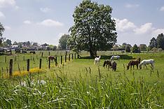 Manege De Paardehoeve 2013