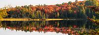 https://Duncan.co/fall-color-at-small-lake