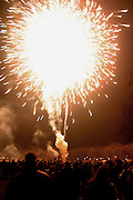 Fireworks at New Years in Prospect Park