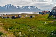 Spitsbergen, Svalbard Archipelago, Norway