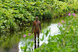 "Antony Gormley ""6 Times"" ""Right"" sculpture in the Water of Leith in Edinburgh, Scotland, UK. comprising six life-size figures, positioned between the  the Scottish National Gallery of Modern Art and Leith Docks. - Editorial Use Only _"