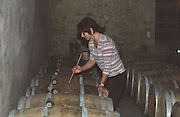 A winery worker stirring the lees (batonnage) of white wine fermenting in oak barrels, Domaine Saint Martin de la Garrigue, Montagnac, Coteaux du Languedoc, Languedoc-Roussillon, France