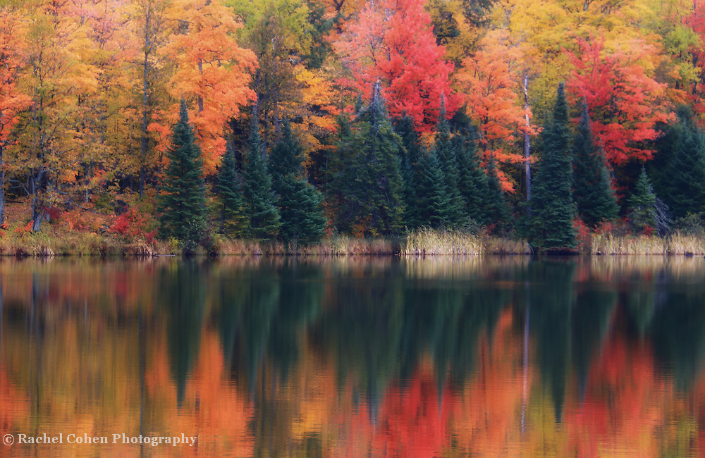 """Reflections on Lake Plumbago""<br /> <br /> Beautiful autumn reflections on Lake Plumbago in Alberta Michigan!"