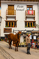 A man and his horse in Trevelez, the highest village in Spain, in the Alpujarra, Sierra Nevada Mountains, Granada Province, Andalusia, Spain.