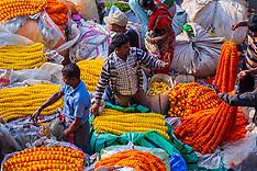 Mallick Ghat Flower Market, South Bank Road, Kolkata