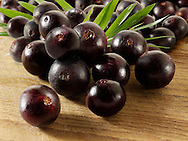 Photos, images & pictures of the Brazilian acai berries the super fruit anti oxident from the Amazon. Acai berries has been associated with helping weight loss. Stockfotos