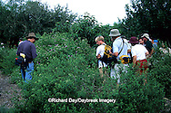 03848-00303 People watching butterflies at flower gardens at Santa Ana National Wildlife Refuge during the Texas Butterfly Festival TX