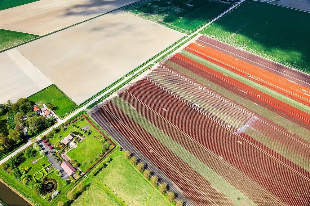 Nederland, Zuid-Holland, Goeree-Overflakkee, 09-05-2013; sproeien bloembollenvelden ten zuiden van Middelharnis.<br /> Spraying of bulb fields, South Holland Islands. <br /> luchtfoto (toeslag op standard tarieven)<br /> aerial photo (additional fee required)<br /> copyright foto/photo Siebe Swart