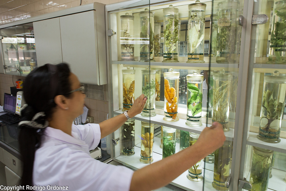 An employee closes a cabinet keeping and displaying different types of plants and tubers in the research and testing lab of the Martha Tilaar factory in East Jakarta, Indonesia, on July 2, 2015.