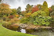 General Images - Autumn