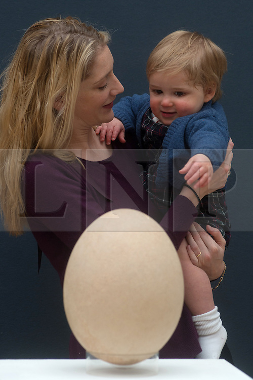 © Licensed to London News Pictures. 27/03/2013. London, UK. Alexandra Robinson and his son, Alexander stand behind a complete sub-fossilised elephant bird egg and chicken's egg on March 27, 2013 in London, England. This elephant bird egg which measuring 100 times the average size of a chicken egg is expected to fetch 30,000 GBP when it features in Christie's sale, which is to be held on April 24, 2013..Photo credit : Peter Kollanyi/LNP