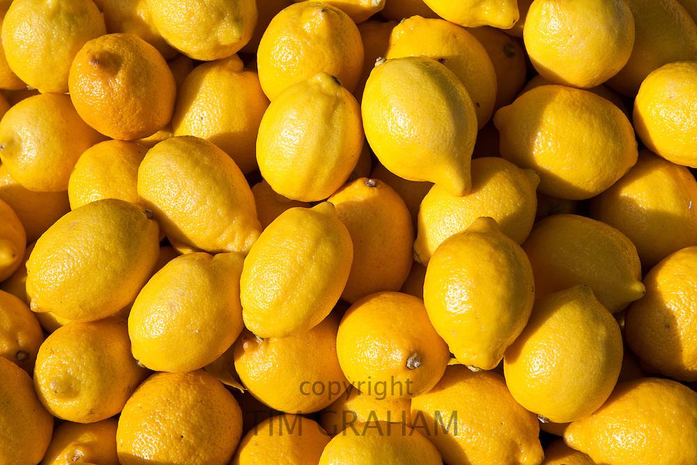 Lemons on sale at food market in Bordeaux region of France
