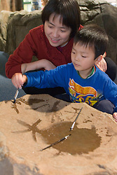 United States, Washington, Bellevue, mother and son paint with water at KidsQuest Children's Museum.  MR, PR