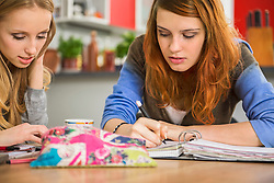 Girl friends studying at home, Munich, Bavaria, Germany