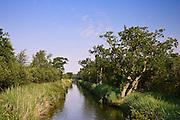 Narrow waterway, Norfolk Broads, United Kingdom