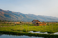 Burma/Myanmar, Inle Lake. Stilt houses and floating fields in one of the Intha villages.