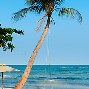 Swing On Lonely Palm Tree, Bai Sao Beach, Phu Quoc, Vietnam