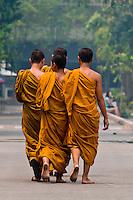 Buddhist monks walking, Wat Chedi Luang (Buddhist temple), Chiang Mai, Northern Thailand