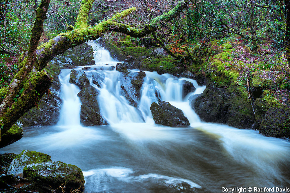 Long exposure of a waterfall in Glengarriff Nature Reserve, Ireland