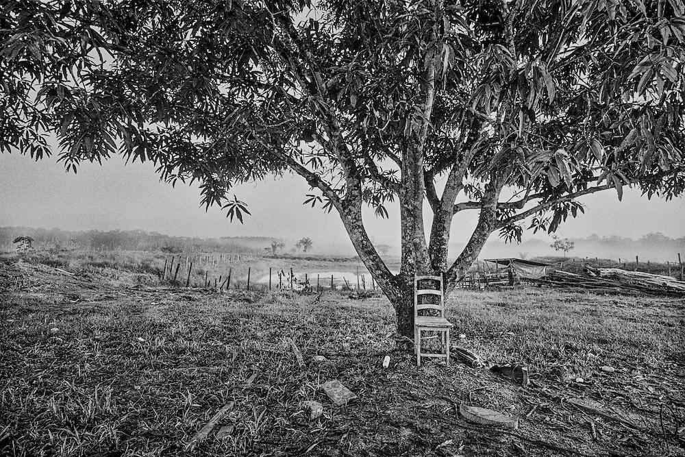 Brazil, Br 156, amapa.<br /> <br /> Six cents Km de piste en terre battue relient Macapa sur l'embouchure de l'amazone a Oiapoque a la frontiere guyanaise.<br /> Unique axe de transport routier, la piste alimente les mines de guyane en machines et en main-d'oeuvre clandestine.