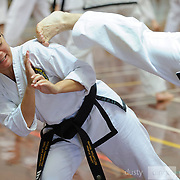 March 2019 Black Belt Master Class