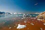 Scenery from Kings Fjord (Kongsfjorden) in west Spitsbergen (Svalbard) in June 2008.