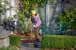 Sweeping up fallen leaves from a patio with a stiff broom.