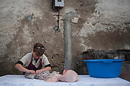 A woman prepares and cuts intestines of a dead pig  in traditional way pig slaughtering.  Doneztebe (Basque Country). December 08. 2016. The slaughter traditionally takes place in the autum and early winter and the work often is done in the open. (Gari Garaialde / Bostok Photo)