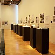 Adam Art Gallery. Victoria University. Wellington. New Zealand. 25th January 2011. Photo Tim Clayton.