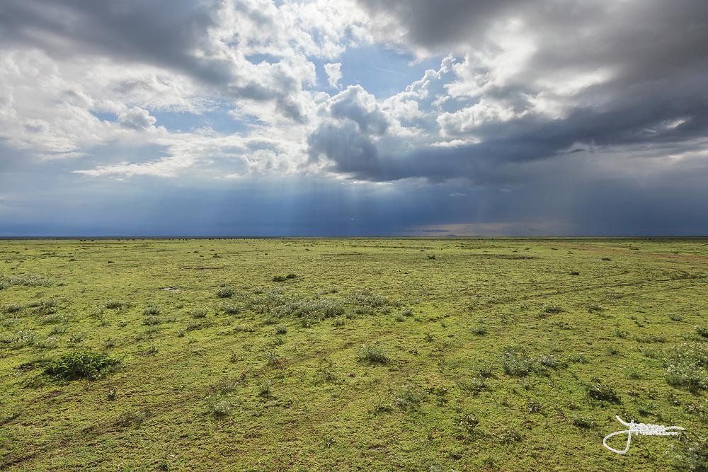 Endless Serengeti in Ndutu area