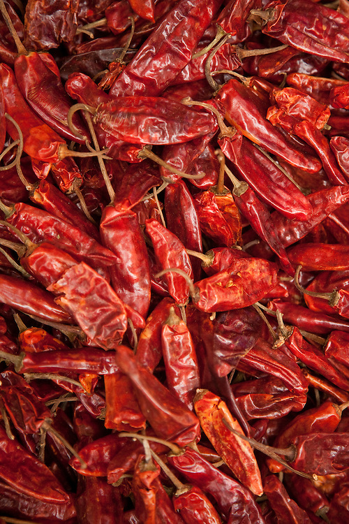 North America, Mexico, Oaxaca Province, Oaxaca, peppers for sale in market